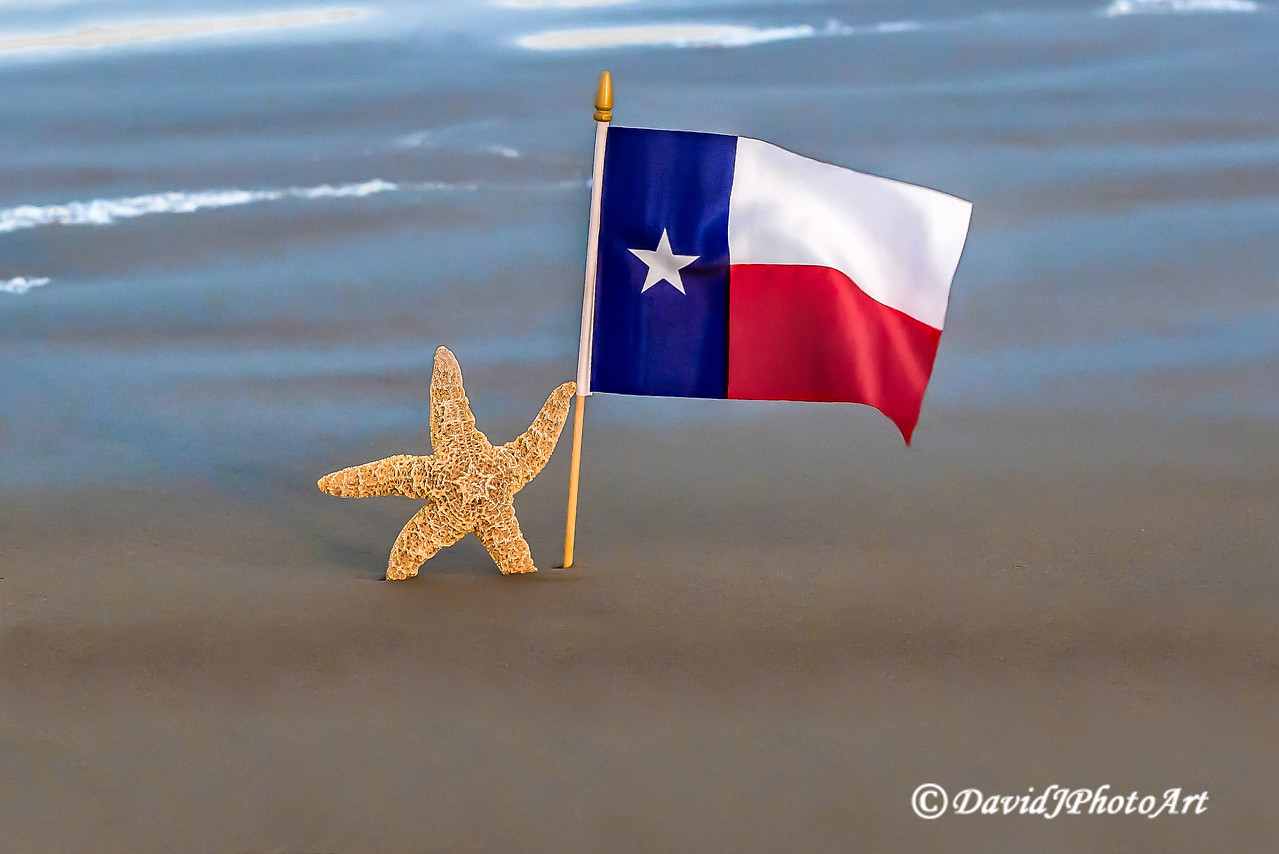 """Lone Star State"""