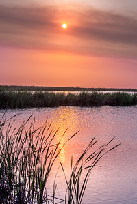 """Marsh Sunset"""