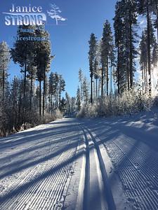 Kimberley-Nordic-Trails-0213-Janice-Strong