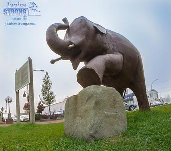 Cranbrook-Ed-Elephant-Sculpture-Wide-Angle-8740-Janice-Strong.