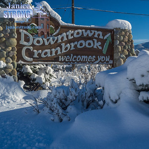 Cranbrook-Snow-9610-Janice-Strong.