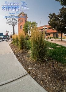Cranbrook-Clock-Tower-Downtown-Wide-Angle-8713-Janice-Strong.