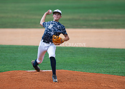 Daniels Baseball vs Fuquay Varina. June 1, 2019. D4S_9325