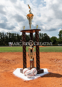 Daniels Baseball vs Fuquay Varina. June 1, 2019. MRC_9143