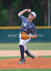 Daniels Baseball vs Fuquay Varina. June 1, 2019. D4S_9351