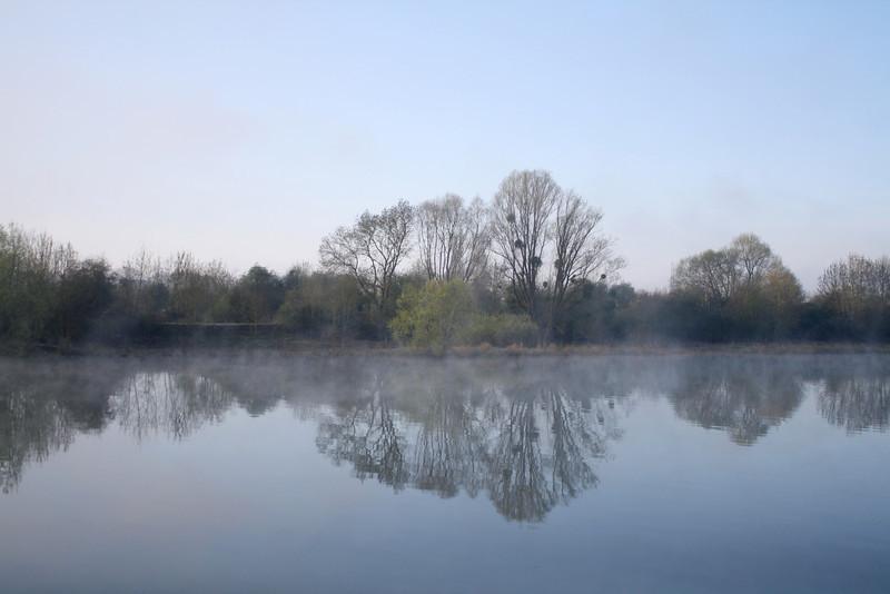 SC 261 Morning Mist