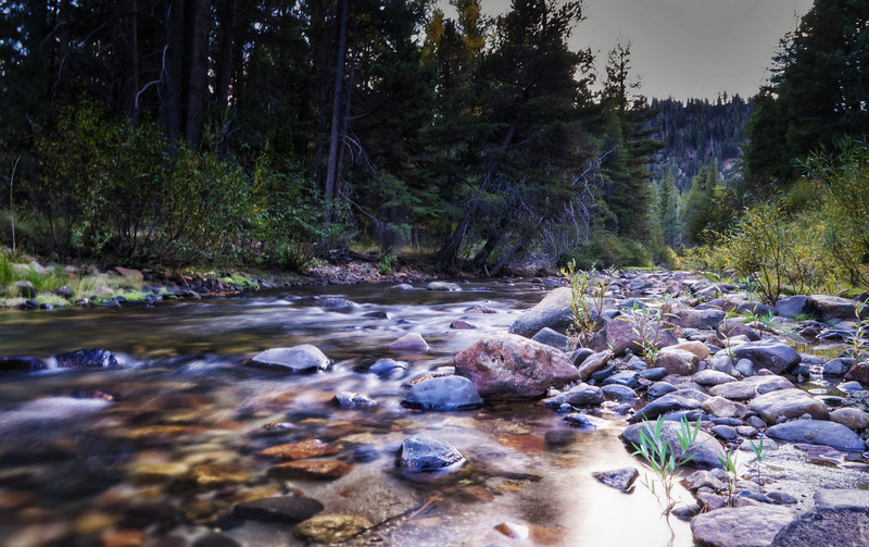 The East Fork of the Carson River during late Fall