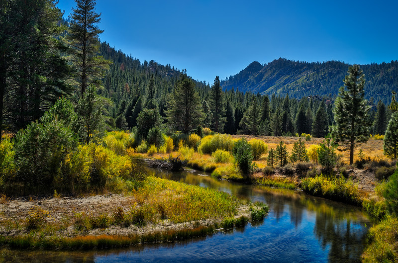 The East Fork of the Carson River