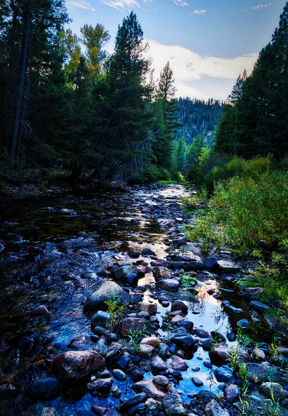 The East Fork of the Carson River during sunset