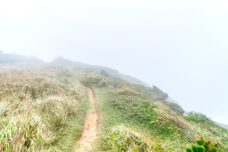 The trail to Blacklock Point socked in with fog