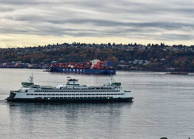 NEA_2379-7x5-Seattle
