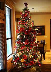NEA_3431-5x7-Xmas Tree