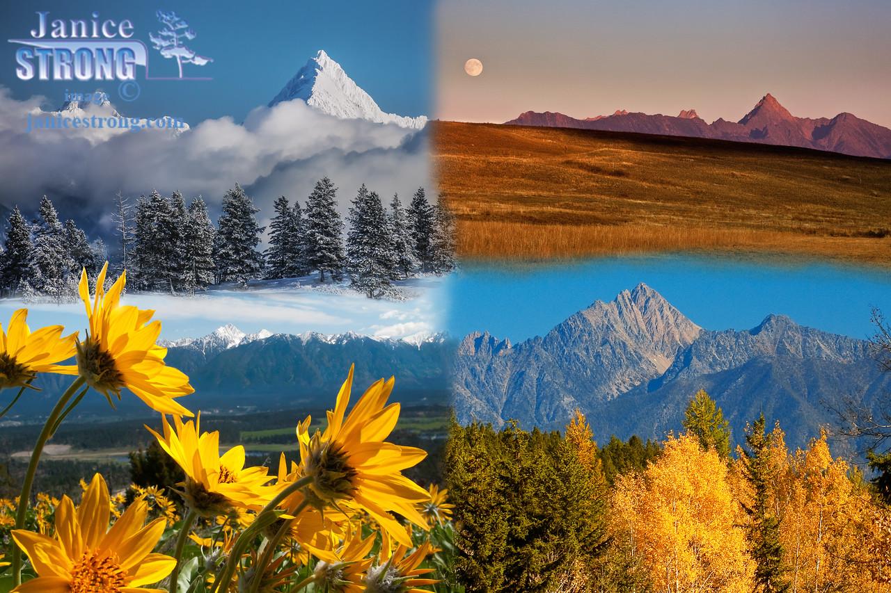 Combined Fisher Peak #9490, #3724, #1642-1640,