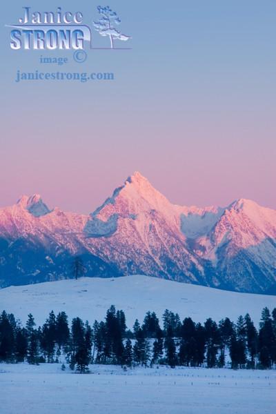 604-6065 Fisher Peak Evening Pink Alpenglow