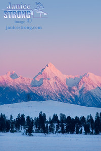 604-6065 Fisher Peak Evening Pink Alpenglow