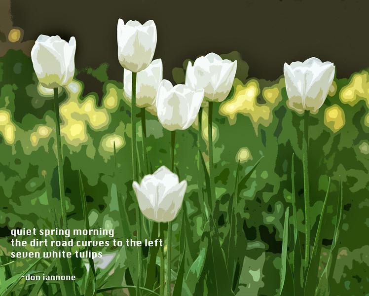 Flowers-173.jpg