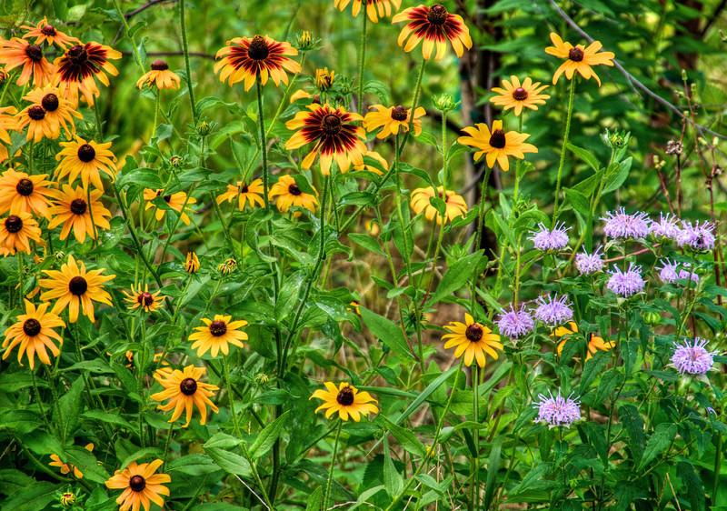 Flowers-144.jpg