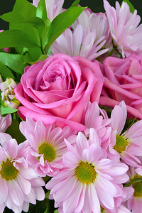 Pink Rose and Daisy Bouquet