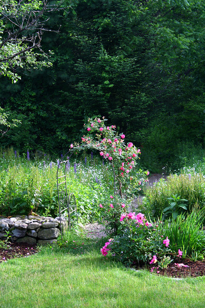 FL 54 Rose Arbor