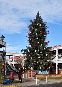 NEA_8088-Christmas Tree