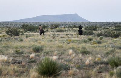 NEA_0463-Cowboys