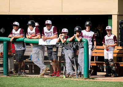 Fuquay-Varina vs West Lake baseball championship at Broughton high School. June 2, 2019. D4S_0224