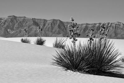 NEA_2056-White Sands-BW