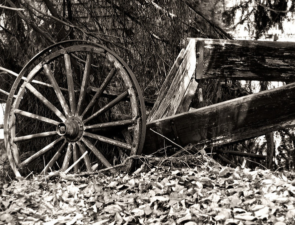 Broken Wagon & Wheel