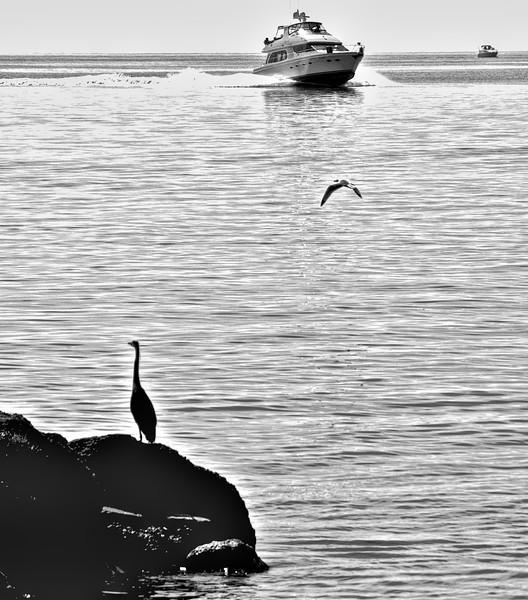 Boats Heron Bratenahl