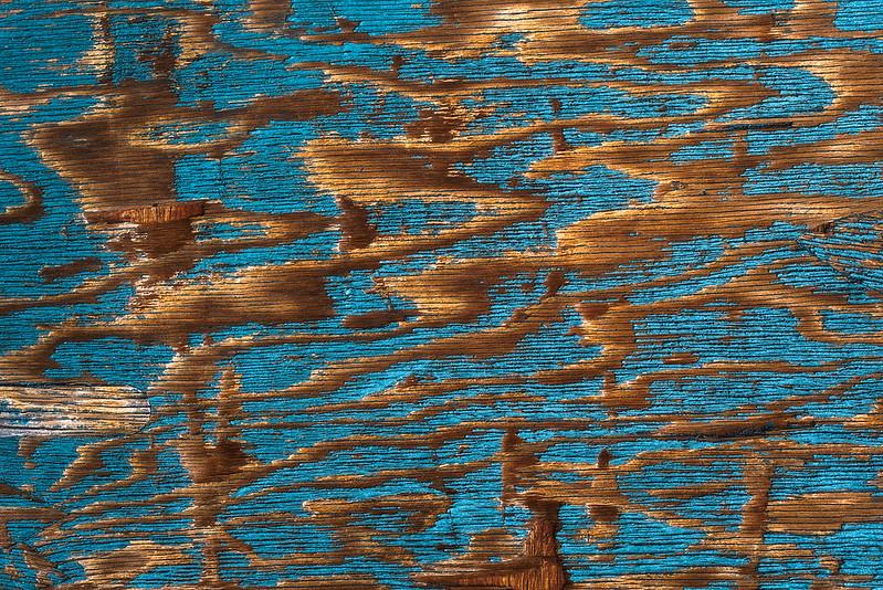 Reindeer Antler Texture, Wooden Shed V