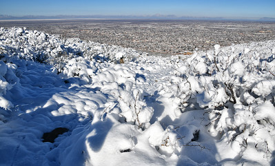 NEA_3698-snowy Trail