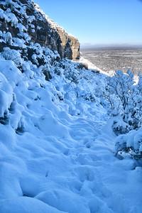 NEA_3690-Snowy Trail