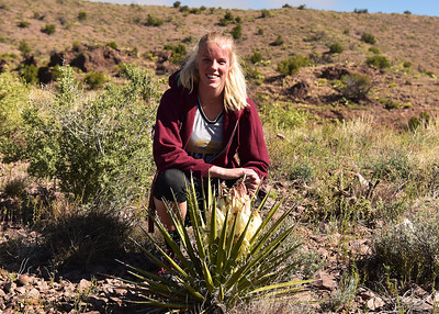 NEA_0984-7x5-Marie-Yucca in Bloom