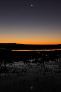 Bosque del Apache 001 4x6 Sunrise