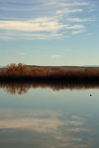 Bosque del Apache 350 4x6 Pond