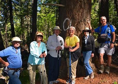 NEA_0047-7x5-Hikers-Old Growth