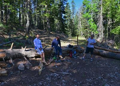 NEA_2251-7x5-Hikers