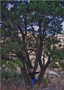 NEA_0039_HDR-5x7-Bill-Tree