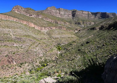 DSC_0084-7x5-Lower Dog Canyon