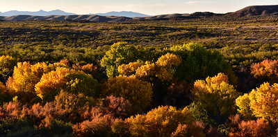 NEA_0332-Fall Color-Tuli Creek