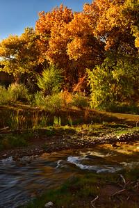 NEA_0250-Color Tuli Creek