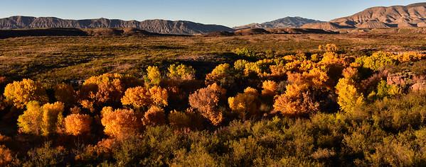NEA_0333-Fall Colors-Tulie Creek