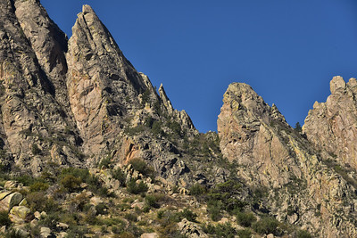 NEA_1230-Organ Mtns-Needles