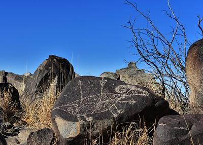 NEA_1925-7x5-Petroglyph