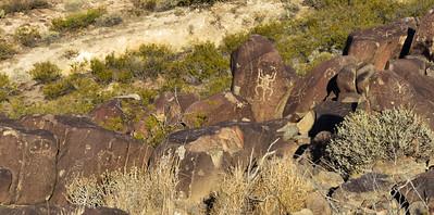 NEA_2579-Petroglyphs