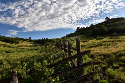 NEA_9430ELK-Argentina Trail