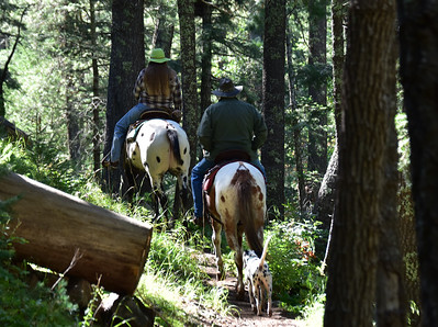 NEA_0414-Horseback riders-dog