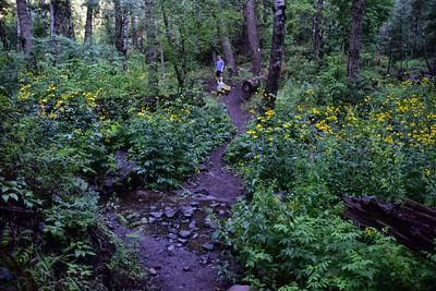 NEA_9391-Argentina Trail
