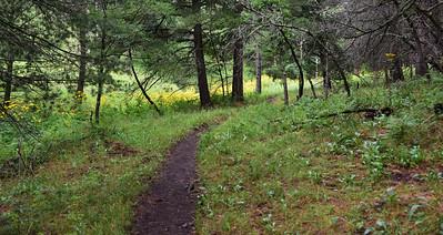 NEA_9481-Argentina Trail