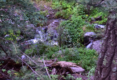 NEA_0343-Argentina Waterfalls